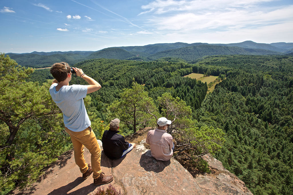 PWV-Dahn Pfälzerwald Aussichtspunkt